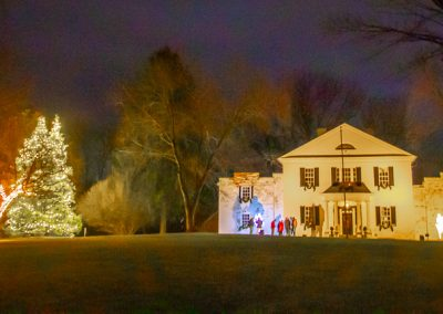 Tree lighting - Festival of lights